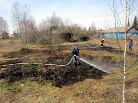 Виновник загорания сухой травы привлечен к ответственности