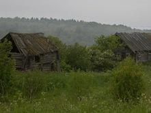 Деревенька моя средь лесов затерялась – ни дорог, ни домов, только память осталась!