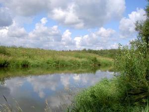 В Кировской области планируется создать национальный парк «Вятка»